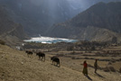 Around Manang - by Henk