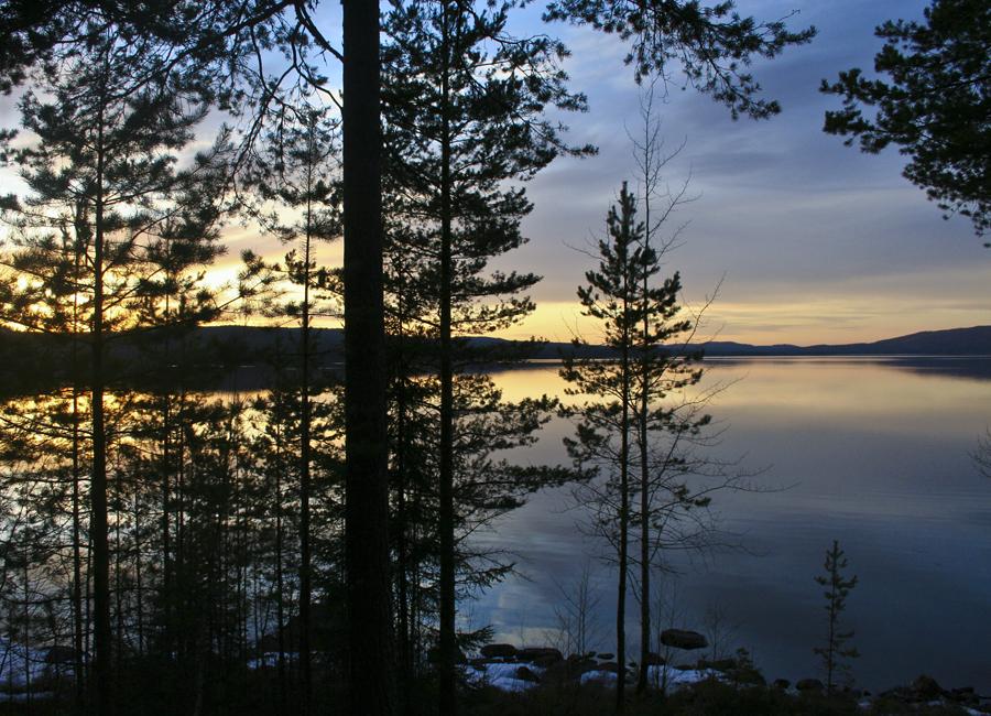 Finnskogen Finnskogen01bjpg