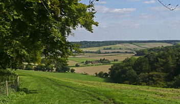 Icknield Way Path, Chiltern Hills