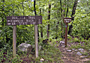 Ouachita Trail - by Dave