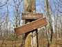 Big Blue Trail / Tuscarora Trail - by SMT