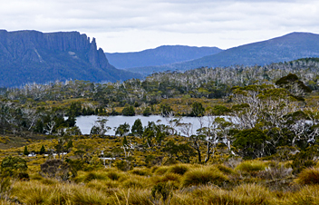 Overland Track - by Tzachy