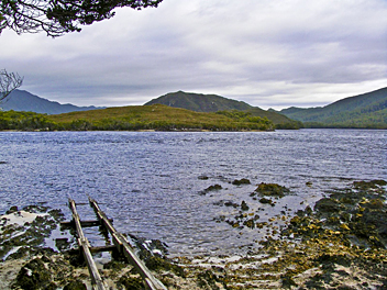 Port Davey Track - by AB